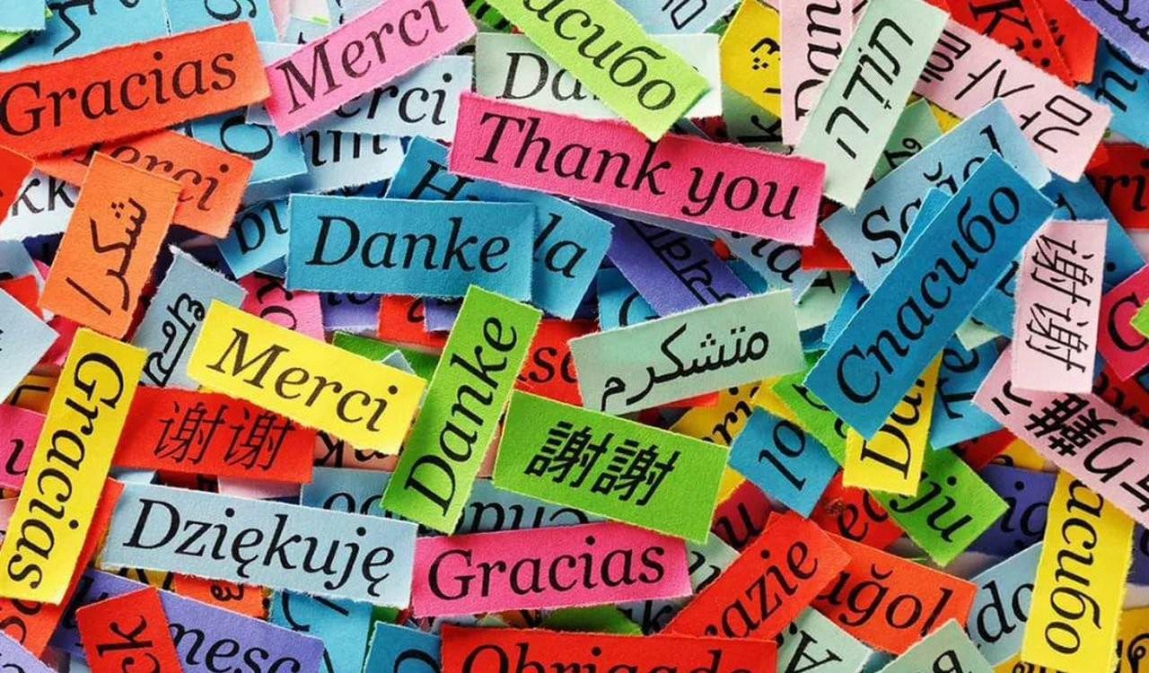 Перевод текстов с немецкого и английского языков оказываем услуги